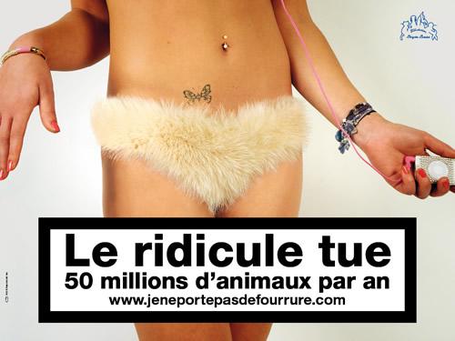 Campagne-2009-2.jpeg