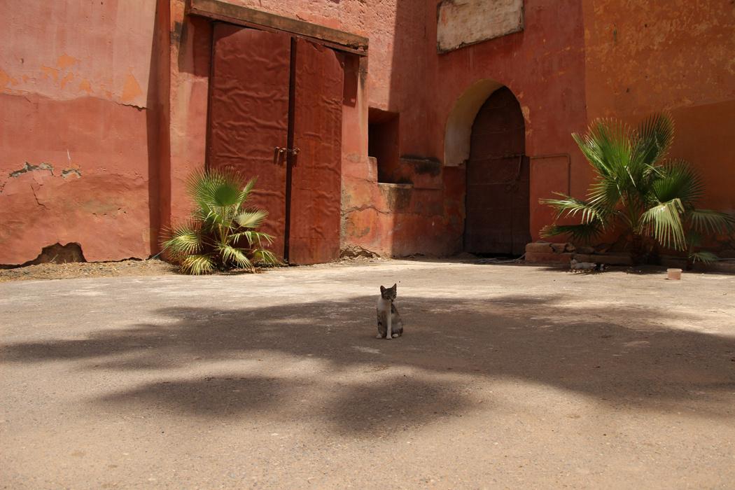 Marrakech et son palais de la Bahia